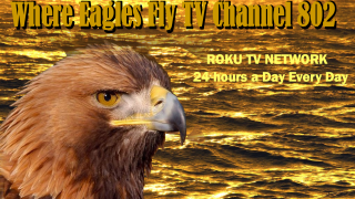 Where Eagles Fly TV